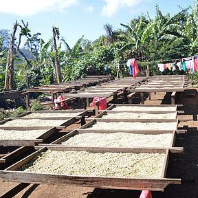 kaffeeaufbereitung-3577b8588a5a80